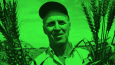 "<a href=""http://www.pbs.org/newshour/"" target=""_blank""><em>The News Hour</em></a> talks about <a href=""http://www.normanborlaug.org/"" target=""_blank""><strong>Norman Borlaug</strong></a> with <a href=""http://www.learner.org/courses/biology/units/gmo/experts/toenniessen.html"" target=""_blank""><strong>Gary Toenniessen</strong></a> of the <a href=""http://www.rockfound.org/"" target=""_blank"">Rockefeller Foundation</a>..."